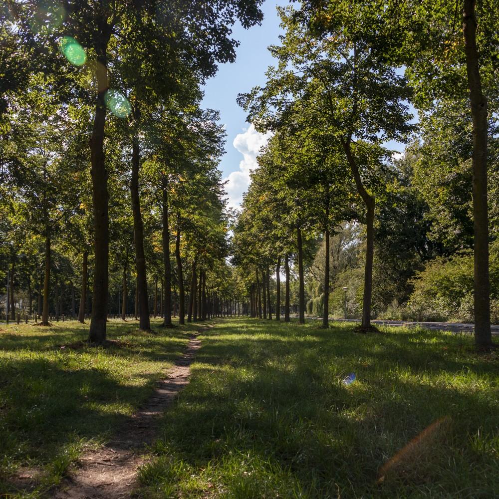 Het mooie park in de directe omgeving van Gezinshuis Gewoon Samen in Ede